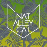 Nat Alley Cat - The Tickler (Tech house)