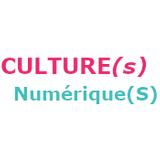 Culture(s) Numérique(s)