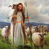 Pastoral de la Salud JeSa