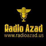 Radio Azad: In Pursuit of Excellence: Find your business ideas March 19 2017