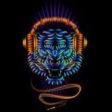 TigerZA - Deep In The Jungle [LIVE] 7/12/16