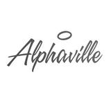 22ème Opus (dernière partie) DJ F - Alphaville - BMFAB - 25.01.15