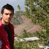 Bilal Haroon