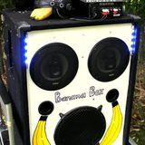 BananaBoxParty