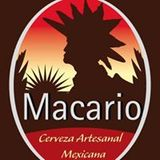 Cerveza Macario