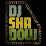 djshadow_lima