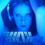 DJ Shay Silver 2013 Commercial Remixes - 2 Hours