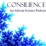 Consilience: An African Scienc