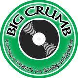 BiG CrUmB foundation reggae dancehall mix 100% vinyl live recording