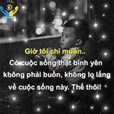Viet Phuong Nguyen