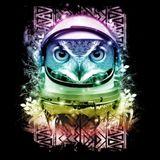 SpaceOwlOrg