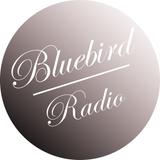 Bluebirdradio