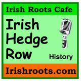 Irish Hedgerow History Lessons