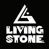 Living~Stone Live @ Picnik Electronik Montreal May 27 2012