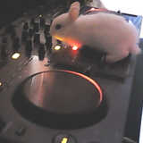 THE KING OF DJ