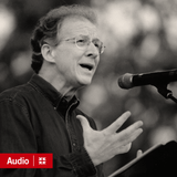 John Piper Messages (Audio)