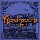 Taberna Mandragora