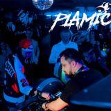 PLAMIC