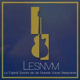 LESNVM radio