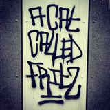 a Cat Called FRITZ