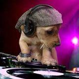 DJ ARMAN
