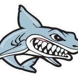 Rachel SharkBait King
