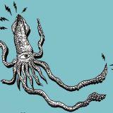 Squidboys
