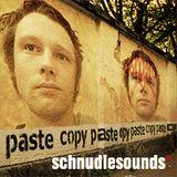 schnudiesounds