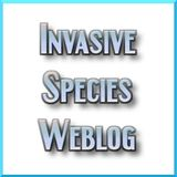 Invasive Species Weblog Podcas