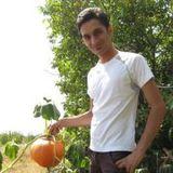 Ruhollah Salehi