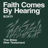 Bokyi Bible (Non-Dramatized)