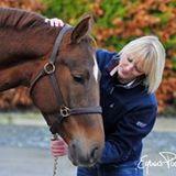 Equine Kinesiology Ireland Cav