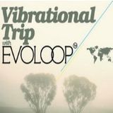 EvoLoop - Vibrational Trip 019 (18-03-2012)
