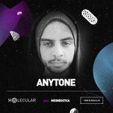Anytone