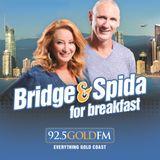 Bridge and Spida