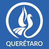MVI Querétaro