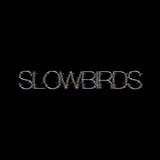slowbirds