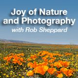 Joy of Nature and Photography