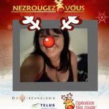 Sylvie Joyeux Noël Lapointe