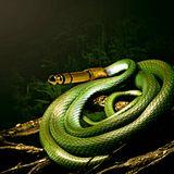 SnakebeatProject