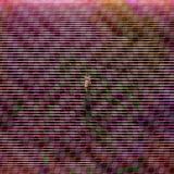 Panorama Dźwięku (04/28/13) - VIII. Nie taki Schoenberg straszny, czyli wstęp do dodekafonii