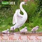 SWANS - 3 April 2013