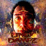Liney Dampz