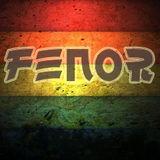 FeNoR