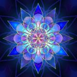 TaoZen aka Shamanic Mandala's