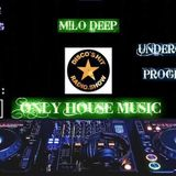 Roger Sanchez - Turn On The Music 2012 (M!lo Deep Bootleg)_320