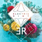 Electric Riot