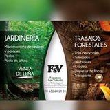 Trabajos Forestales Francisco