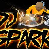 DJ Spark