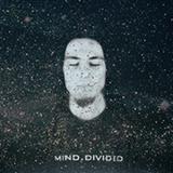 MindDivided